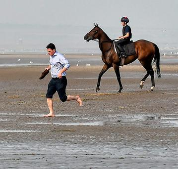 Trainer Michael O'Callaghan runs ahead of his horse
