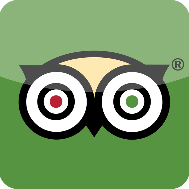 Image result for tripadvisor logo