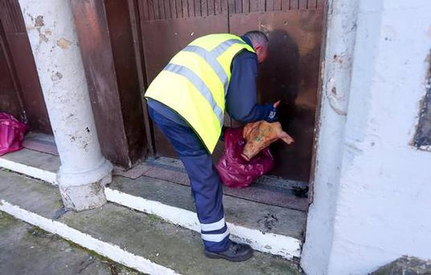 The pigs' heads were left on the doorstep at St Luke's Church in north Belfast Picture - Kevin Scott / Presseye