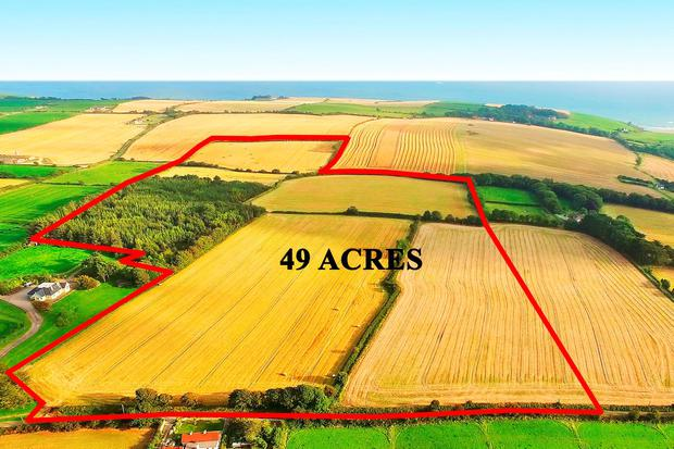 The 49ac holding at Kilbrittain is located on elevated ground with a sea view and 9ac of forestry.