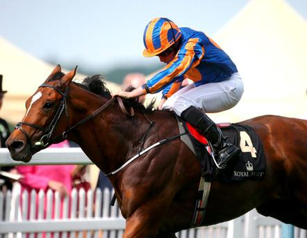 Gleneagles and Ryan Moore, here winning at Royal Ascot, can score a first for Aidan O'Brien in the Breeders Cup Classic this evening