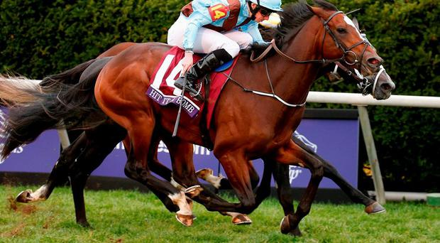 Aidan O'Brien's Hit It A Bomb powers home under Ryan Moore to claim the Breeder's Cup Juvenile Turf at Keeneland last night