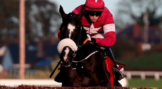 Don Cossack and Bryan Cooper sail over the final fence on their way to victory at Down Royal