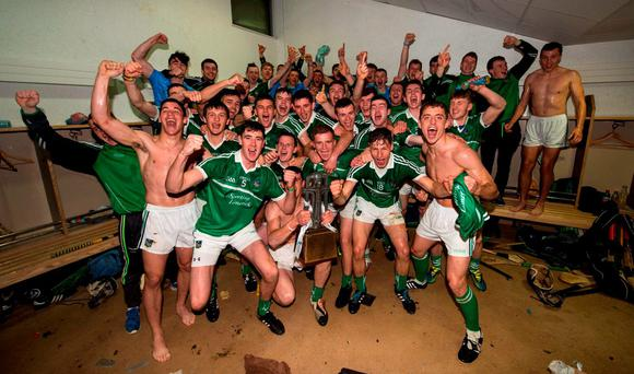 Limerick hurlers' win earlier this year is etched in history, but for how long more?