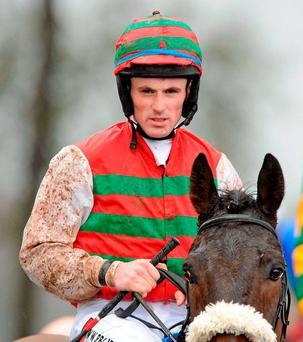 Sean Flanagan might get among the winners again onboard Omega Springs