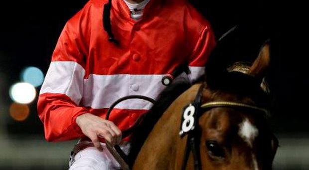 David Marnane's Jamesie bids for another course win at the Co Louth all-weather venue
