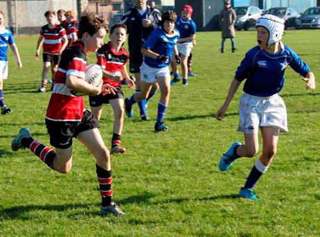 Wicklow U12s are making good progress this season as they transition to Youths rugby next year