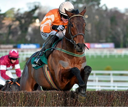 Twinlight will tomorrow strive to secure back-to-back editions of Navan's Fortria Chase