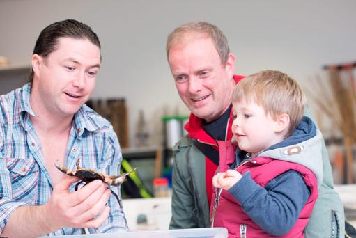 Robin Barry shows an edible crab to Ciaran and Luca McCaully at IT Sligo Science Fair yesterday