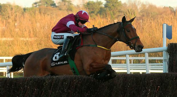 Noel Meade will be hoping that Road To Riches can make a winning seasonal debut under Bryan Cooper in this afternoon's Clonmel Oil Chase