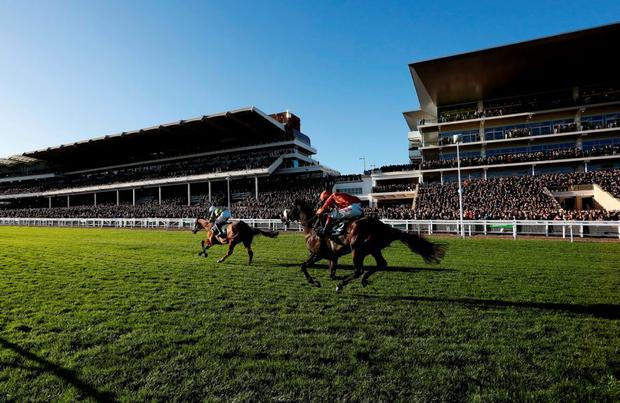 More of That, with Barry Geraghty up, on the way to winning The Steel Plate And Sections Novices' Chase at a packed Cheltenham yesterday