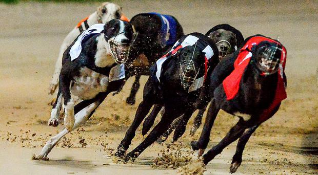 Huge crowds braved the elements at Shelbourne (stock photo)