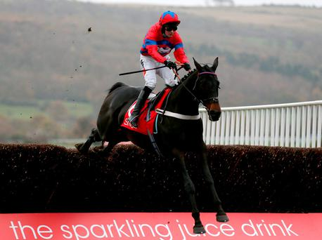 Sprinter Sacre ridden by Nico de Boinville clears the last before winning the Shloer Chase at Cheltenham