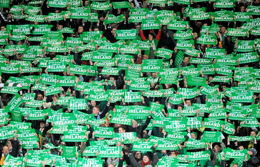 Ireland fans at the game. FIFA 2010 World Cup Qualifying Play-off 1st Leg, Republic of Ireland v France, Croke Park, Dublin. Picture credit: Paul Mohan / SPORTSFILE