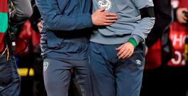 Roy Keane and Martin O'Neill arm in arm after Ireland's victory over Bosnia