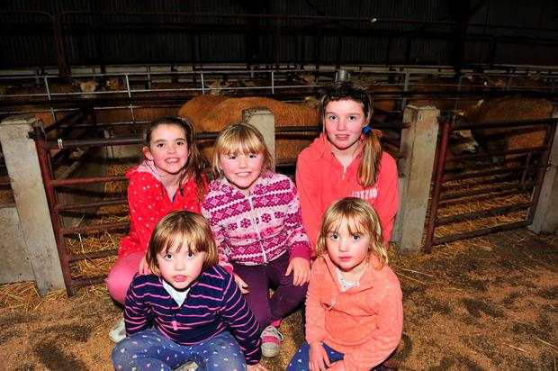 The Dunne family enjoying the Pedigree Charollais sheep sale inTullow mart on Saturday, front Allison, Ashling, in the back were Aoife, Aine and Aimee Dunne (l-r) from Jenkinstown, Co Kilkenny. Photo: Roger Jones.