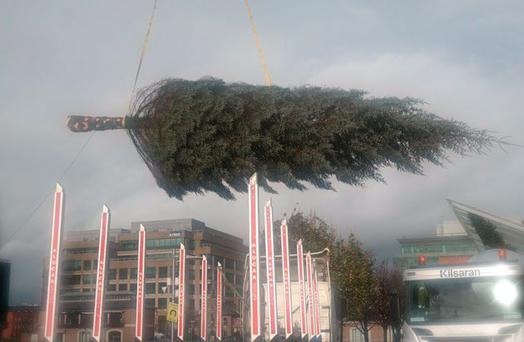 The 50-foot Christmas Tree being moved into place Credit: I BELIEVE/Twitter