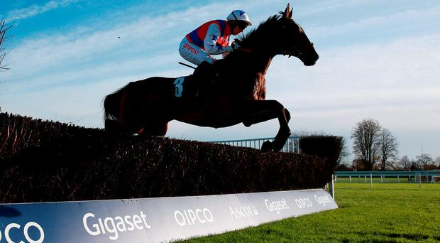 Thomas Brown, under Noel Fehily, sails over a fence on the way to landing yesterday's beginners' chase at Ascot