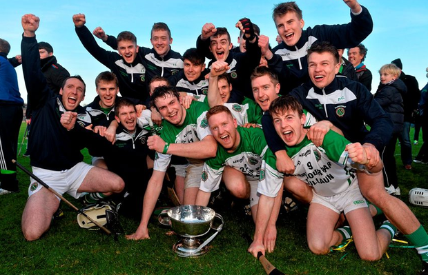 Sarsfields players celebrate at the end of the game.