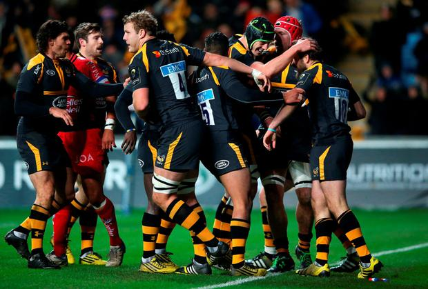 Ruaridh Jackson (R) of Wasps is mobbed by team mates after scoring a try during the European Rugby Champions Cup match between Wasps and Toulon at the Ricoh Arena on November 22, 2015 in Coventry, England. (Photo by David Rogers/Getty Images)