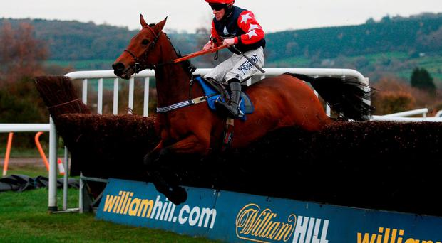 King's Song, with Brian Hughes up, jumps the final fence on their way to victory in the novices' handicap chase at Ludlow yesterday