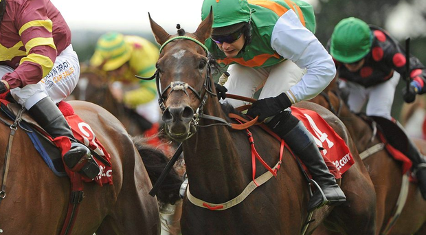 Johnny Levins, seen here in 2010, has produced two winners and two placed horses from his last five (Stock Photo)