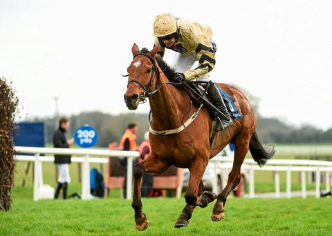 Shaneshill will lend some quality to proceedings at Thurles today