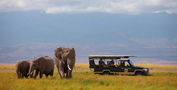 Tortilis Camp - Game Drive