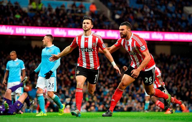Southampton's Shane Long celebrates scoring his sides first goal