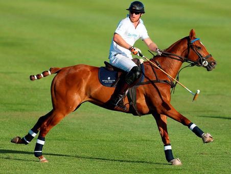 Prince Harry is an accomplished polo player