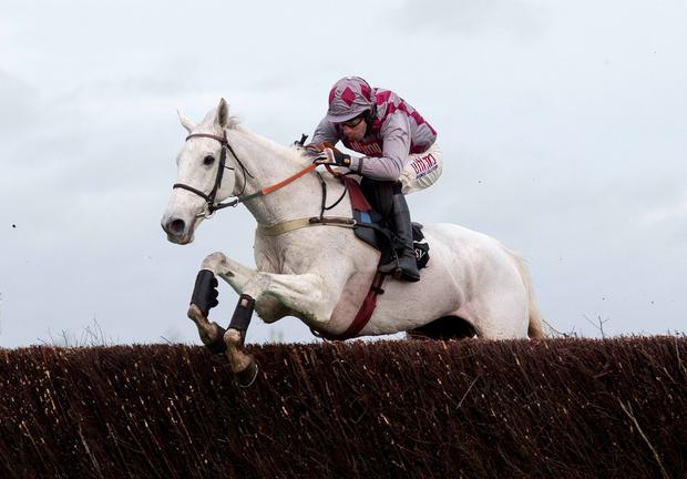 Smad Place put in a thrilling round of jumping and front-running to win the Hennessy