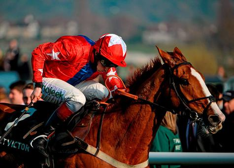 Sire De Grugy, here winning last year's Champion Chase, represents value in the Tingle Creek