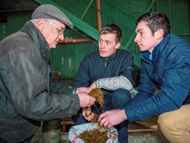 Pictured at the Teagasc winter feeding event in Thurles Mart are Michael White, Teagasc Thurles, John Crowe, Tipperary and Diarmuid Grant, Drombane. Photo O'Gorman Photography.