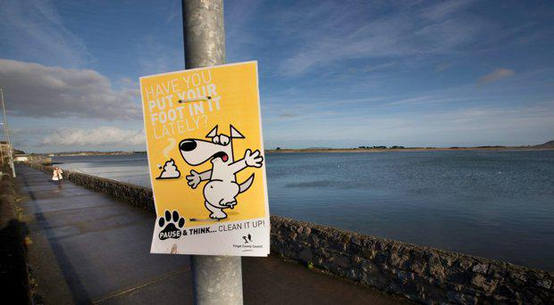 Audio devices that used to be in lamppost that lead to an 80 percent drop in dog fouling in Baldoyle