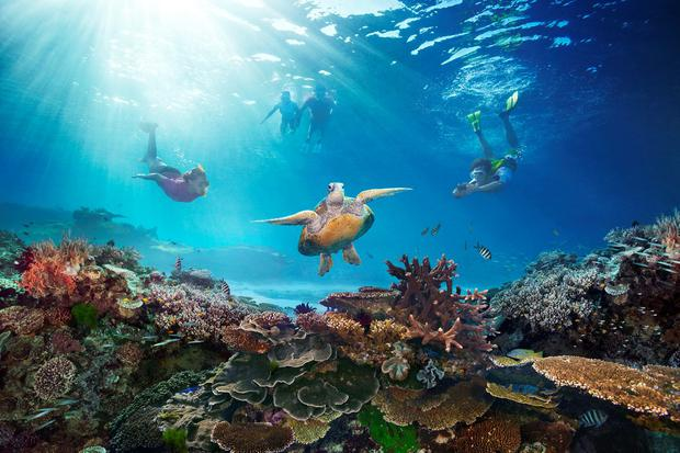 The Great Barrier Reef. Photo: PA Photo/Tourism Australia.