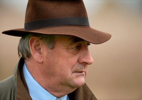 Trainer Noel Meade is still weighing where to run Texas Jack on Sunday