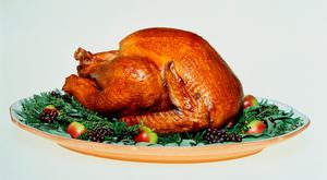 Roast turkey on serving dish