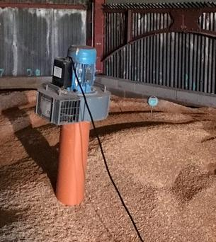 The fans are moved from one vent to another in an effort to keep the grain temperature at 10C.