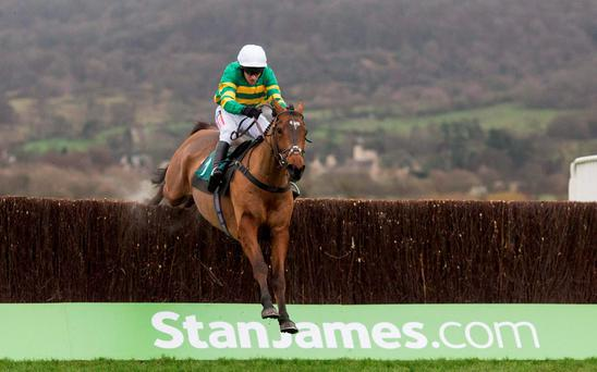 Jonjo O'Neill has intensified speculation surrounding More Of That being aimed at the Gold Cup