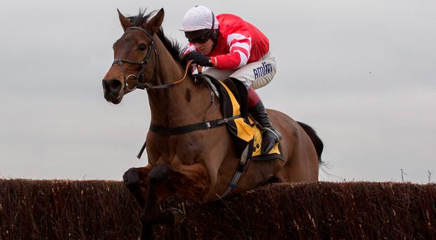 Coneygree has been taken out of the betting for the Gold Cup after suffering another setback. Photo: Julian Herbert/PA Wire