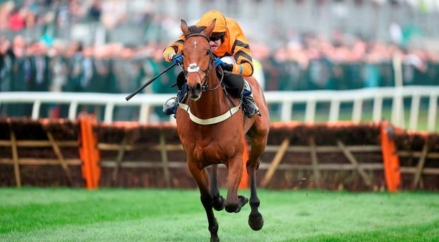 Thistlecrack, ridden by Tom Scudamore, runs in the Long Walk Hurdle at Ascot today. Photo: PA Wire