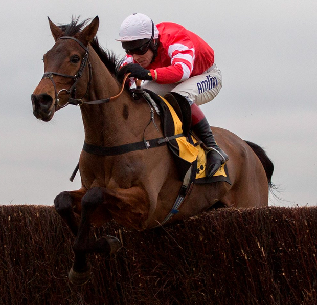 Due to injury, reigning Coneygree looks likely to forfeit his crown Photo: Julian Herbert/PA Wire