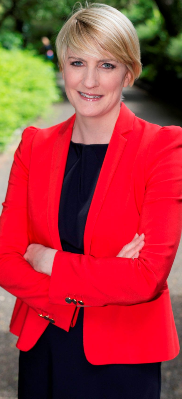 Senator Averil Power who resigned from the Fianna Fáil party Pic:Mark Condren 26.5.2015