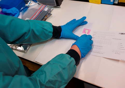A DNA technician at work in a Forensic Science Ireland lab Photo: doug.ie