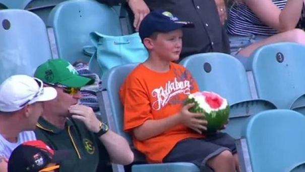 Watermelon is the first viral hero of 2016