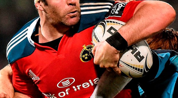 Munster's Billy Holland: 'This is a results-based business. The only thing that matters is getting the win so it was crucial that we got something out of Ulster, going into three European weeks in a row' Photo: Matt Browne / SPORTSFILE