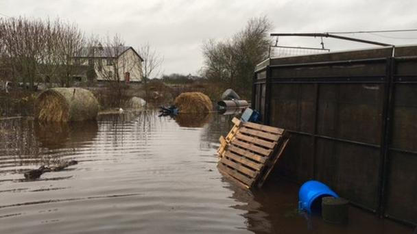 Bedding and feeds have been lost as a result of the flooding on Thomas Cleary's premises