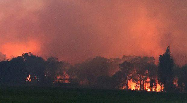 The bushfire in Waroona on Friday morning Photo: Association of Volunteer Bush Fire Brigades WA