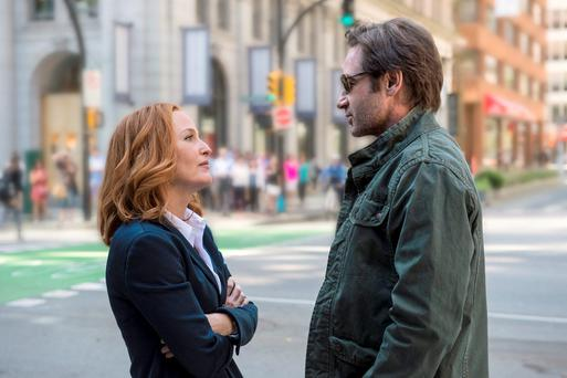 Gillian Anderson as Dana Scully and David Duchovny as Fox Mulder.
