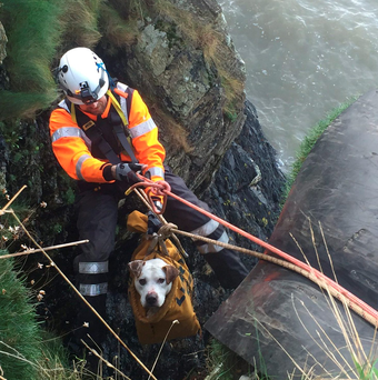 Kevin Morrissey of the Howth Coast Guard rescuing Hooch, who was trapped on sea cliffs at Balscaden on Howth Head